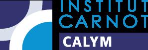Institut Carnot CALYM